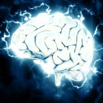 brain 1845962 1920 1